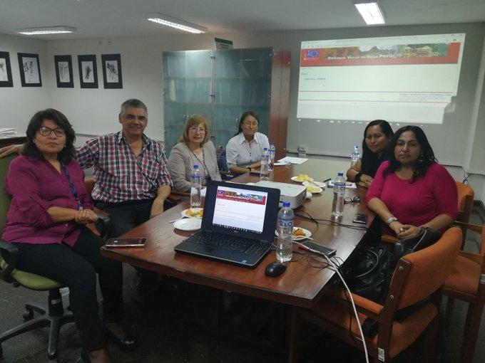 comité técnico bvs perú